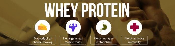 Whey Protein Benefits